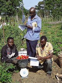 Farmers conducted their own field trials and collected data.
