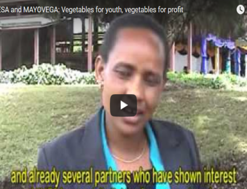 VINESA and MAYOVEGA: Vegetables for youth, vegetables for profit