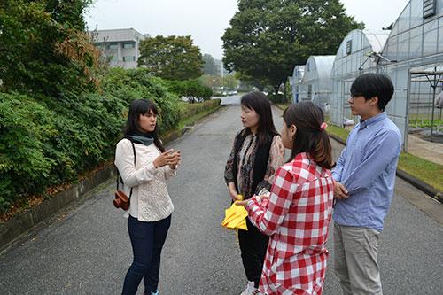 (left to right) Supannika Sanguansil sharing her cucurbit breeding experience with Korean researchers Hee-Ju Lee, Jin-Hee Kim and Jun-Hyeok Kim