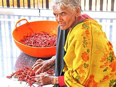 Chili on the value chain in Karnataka