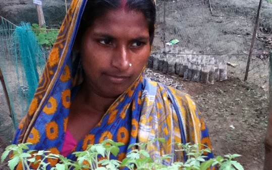 The effect of women's home gardens on vegetable production and consumption in Bangladesh