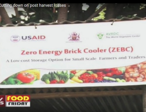 Postharvest tech featured on Food Friday