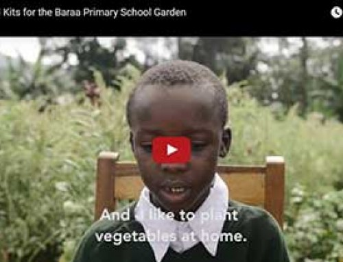 Seed Kits for the Baraa Primary School Garden