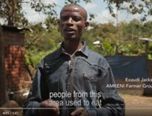 The VINESA Project: DIVERSIFYING DIETS