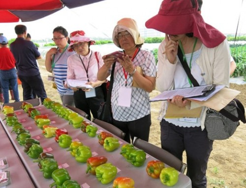 Taiwan seed companies see progress in the field
