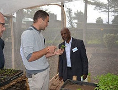 Director General of Agriculture Development of Rwanda visits WorldVeg