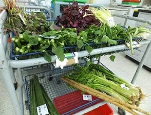Recapturing vegetable phytonutrients for healthier diets