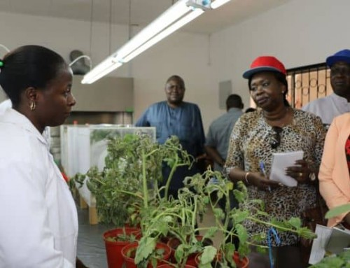 East African Legislative Assembly visits WorldVeg in Tanzania