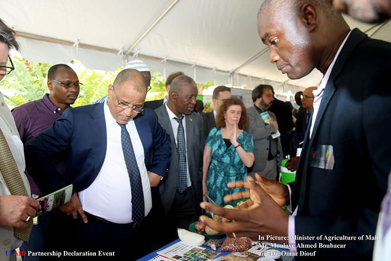 Omar Diouf (right) explains WorldVeg activities to Mali's Minister of Agriculture, H.E. Mr. Moulaye Ahmed Boubacar.
