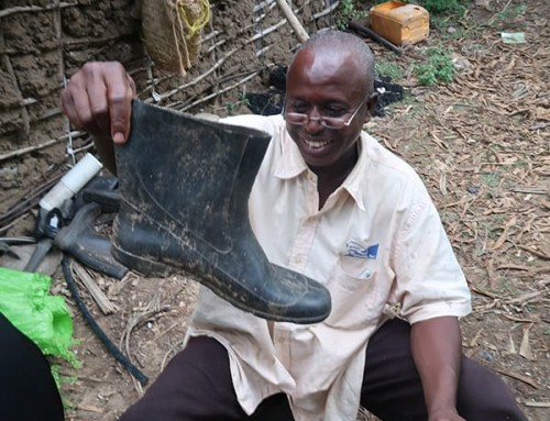 Cultivating a taste for traditional African vegetables